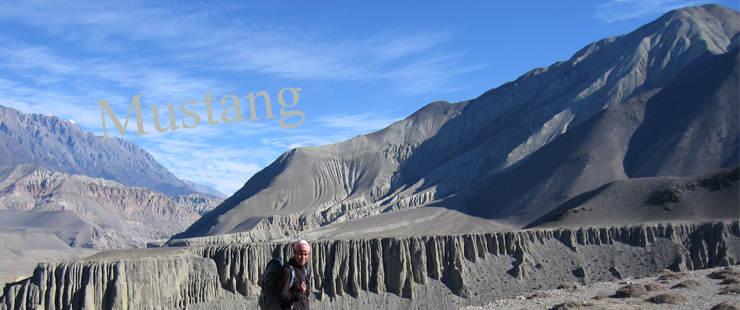Landscape of Mustang